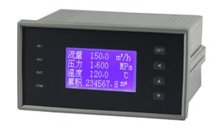 流量积算仪 DM1400