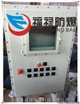 BXMD 现场防爆照明动力配电箱