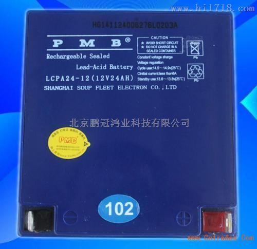 PMB蓄电池LCPA24-12/12v24ah产品促销