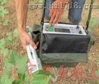 植物蒸腾导读测定仪/植物蒸腾/导读测定仪 型号:MC12/ZX-1023库号:M406186