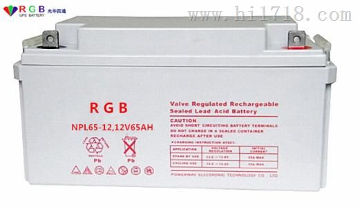 铅酸蓄电池 NPL65-1212V65AH RGB 蓄电池原装正品销售