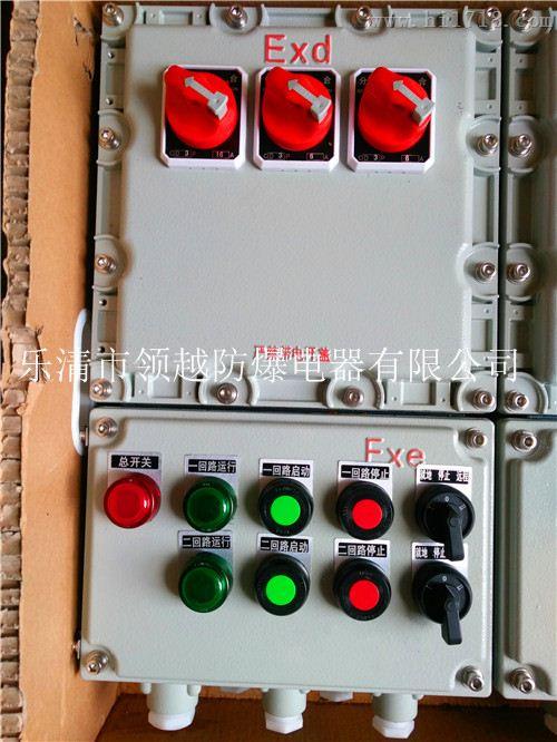 BXD51-F粉尘防爆动力配电箱
