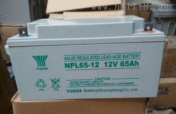 NP38-12蓄电池UPS专用 发电厂等...