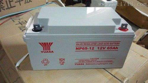 汤浅NP65-12铅酸12V65AH免维护电池