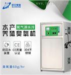 启立60G水处理氧气源臭氧发生器