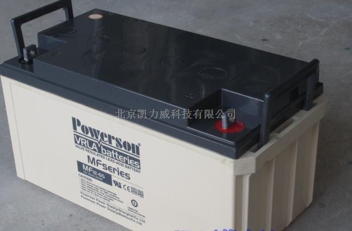 复华蓄电池6-GFM-24/12V24AH保护神系列