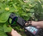 LAM-A植物活体叶面积仪