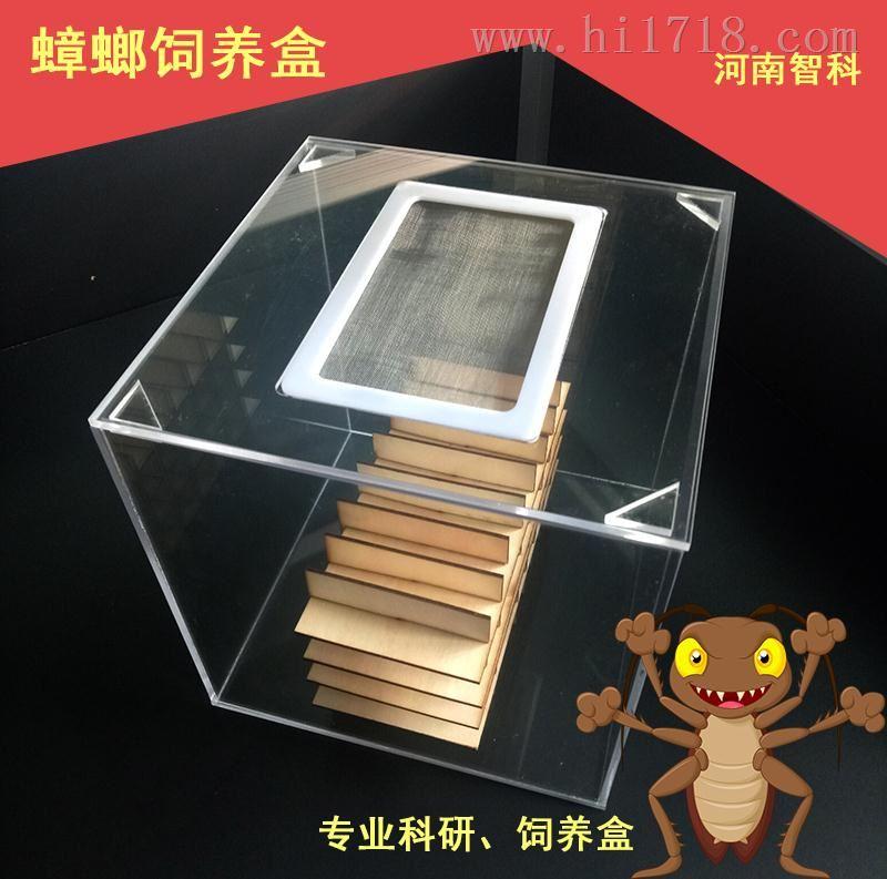 蟑螂饲养缸 ZK-SYG 有机玻璃