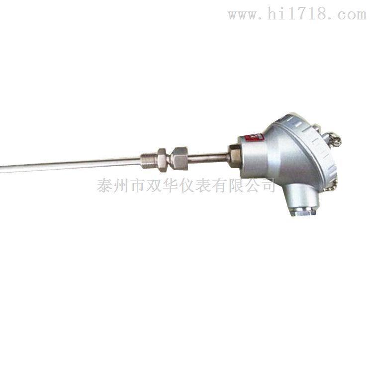 江苏高精度热电阻制造商WZP-131