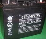 NP24-12冠军蓄电池12V24AH