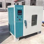 101-A型智能型电热鼓风干燥箱价格 厂家