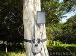 正品彩信数据传输红外监控摄像机AM-999