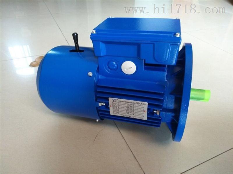 清华紫光BMD7124刹车电机