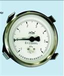 布莱迪80 防高过压膜盒压力表