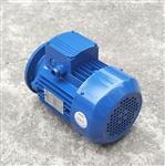 台州MS7126紫光三相异步电机