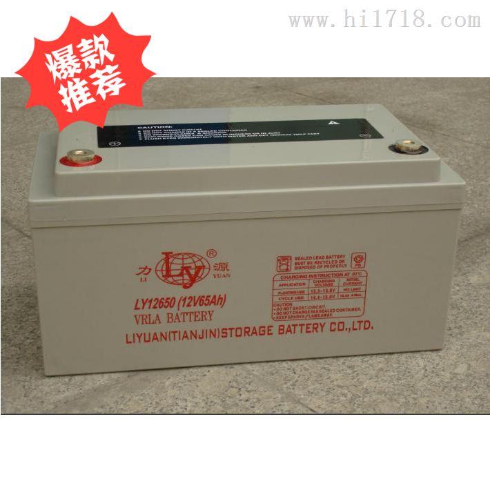 高功率电瓶 12v 正品现货 质量保障