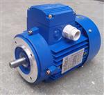 中研MS90S-6紫光三相异步电机