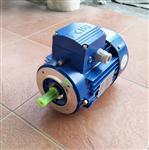 台州清华MS7116紫光减速电机