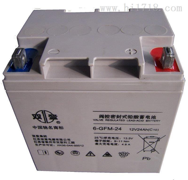 6-GFM-24双登蓄电池12V24AH价格参考