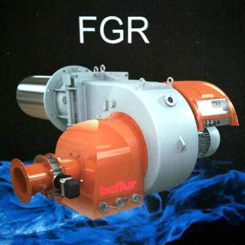FGR.jpg