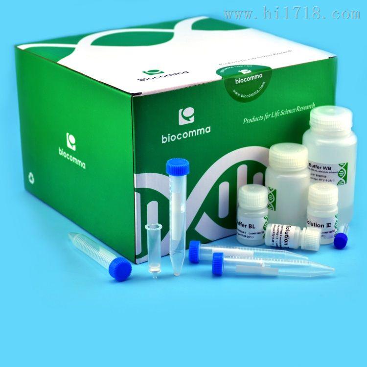 质粒中提纯化试剂盒离心柱型10次