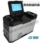 和诚污染源监测烟尘采样烟气测定HC-9001型