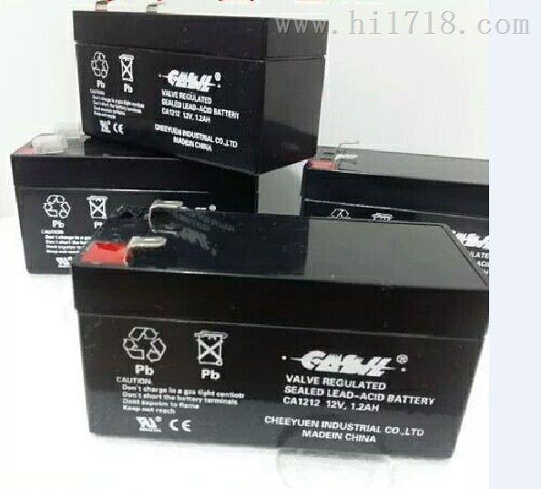 卡西欧12v2.3 精密电子设备专用 CASIL