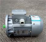 MS90S-4中研紫光三相异步电机