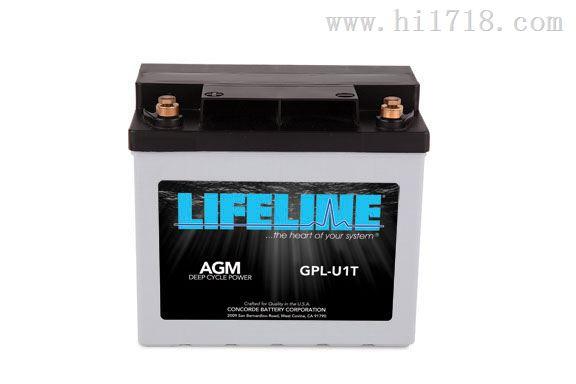 美国进口LIFEINE蓄电池代理询价