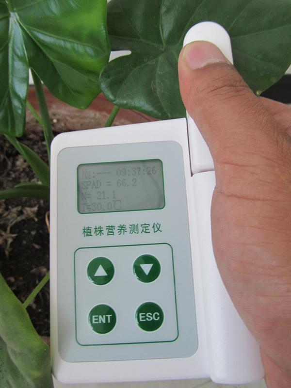 绿色作物叶片营养测定仪
