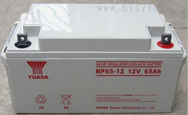 YUASANP65-12汤浅蓄电池12V65AH