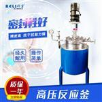 CJF不銹鋼高壓反應釜 實驗室高壓反應釜 廠家直銷