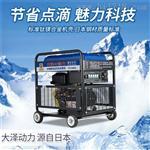 300A双缸柴油发电机大泽动力