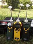 PGM-7300PGM-7320PGM-7340voc檢測儀