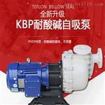 5.5kw自吸泵价格 大功率耐酸碱泵报价