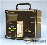 便携式微量氧气检测分析仪GPR-1200