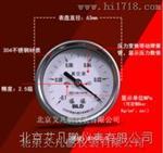 布莱迪 不锈钢压力表YTE-63HZ