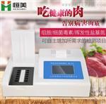 恒美HM-B12病害肉检测仪