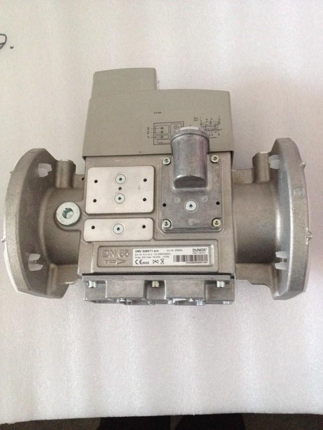 DMV5065 11.jpg
