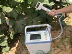 FS-3080H植物光合儀