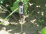 石家莊TP101針式土壤溫度計