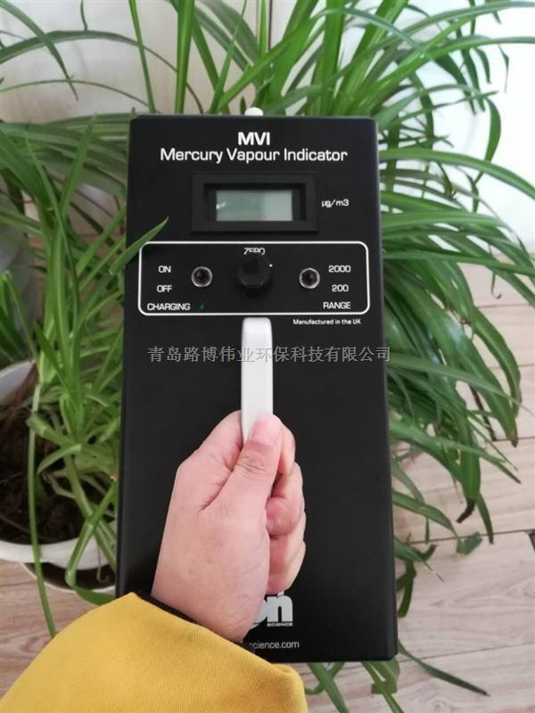 南京实验室测汞仪MVI汞蒸汽检测仪