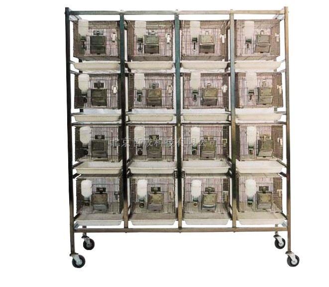 干养式饲养鼠笼/动物实验饲养系列/现货